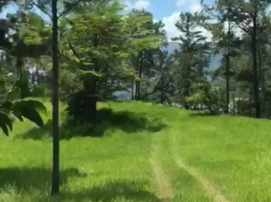 Lote terreno Monte Bonito